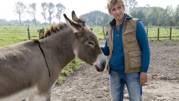 Fritz Fuchs (Guido Hammesfahr) ist skeptisch: Ob das der echte Tierpark-Esel ist? | Rechte: ZDF/Antje Dittmann