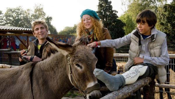 Fritz Fuchs (Guido Hammesfahr) und Bastian (Bruno Schubert) helfen der Tierpflegerin Mara (Laura Lo Zito). | Rechte: ZDF/Antje Dittmann