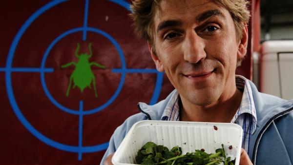 Käfer im Fadenkreuz - Fritz (Guido Hammesfahr) forscht bei einem dubiosen Insektenzüchter, nur was haben die Marienkäfer da zu suchen? | Rechte: ZDF/Antje Dittmann