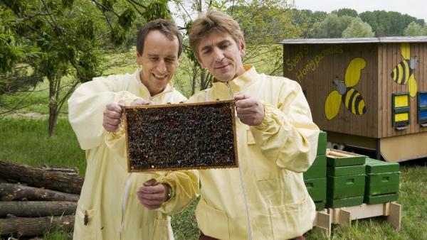 Die Honigmacher! Fritz Fuchs (Guido Hammesfahr) bekommt von Imker Sven (Oliver Dupont) eine Einweisung in die Bienenzucht. | Rechte: ZDF/Antje Dittmann