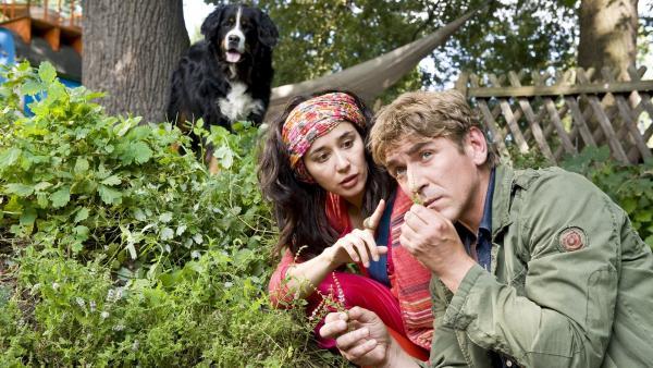 Fritz Fuchs (Guido Hammesfahr) und Magic Maggie (Dorka Gryllus) begeben sich gemeinsam auf die Spur des giftigen Krautes. | Rechte: ZDF/Antje Dittmann