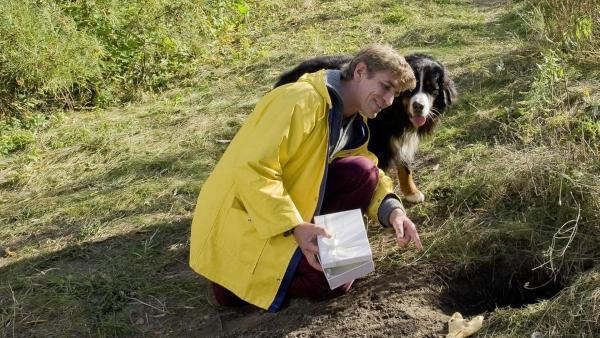 Keks und Fritz stehen an einem Fuchsbau und schauen hinein.   Rechte: ZDF