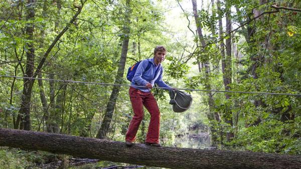 Fritz auf einem Drahtseil im Wald | Rechte: ZDF
