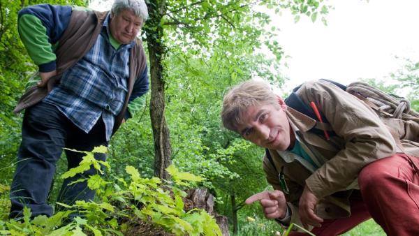 Paschulke und Fritz beim geocachen | Rechte: ZDF