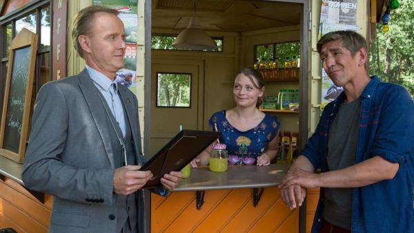 Hornissen | Rechte: ZDF