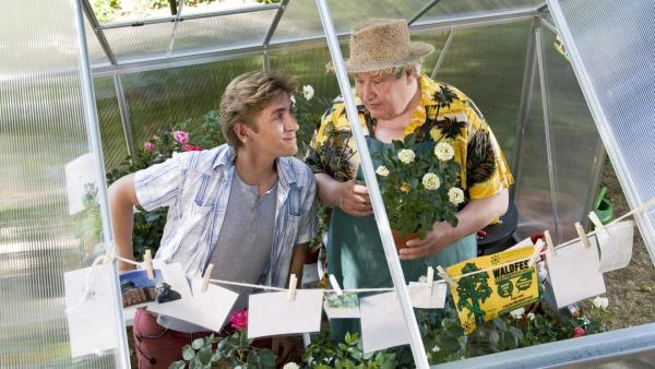 Fritz und Paschulke stehen in einem Gewächshaus, in dem Rosen wachsen. | Rechte: ZDF