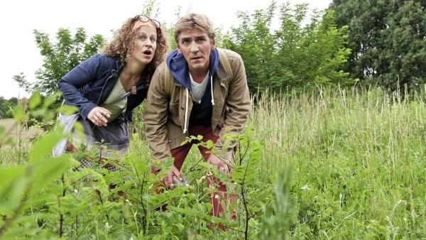 Fritz und eine Frau auf der Suche nach Schmetterlingen auf einer Wiese | Rechte: ZDF