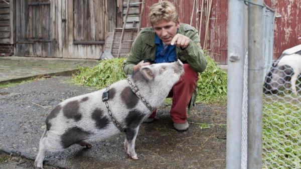 Ein kleines geschecktes Schwein steht vor Fritz, der in der Hocke hinter dem Schwein sitzt. | Rechte: ZDF