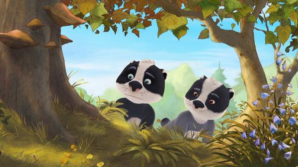 Die Zwillinge Luis und Matteo beobachten die Freunde bei einer Verabredung.   Rechte: WDR/Mediatoon