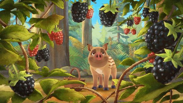 Pico ist glücklich, denn er hat im Wald besonders schöne Beeren gefunden.   Rechte: WDR/Mediatoon