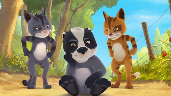 Matteo ist sauer auf Rosie, dann versuchen die Dorfkater ihn gegen das Fuchsmädchen aufzuhetzen. | Rechte: WDR/Mediatoon