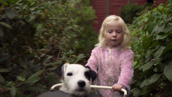 Mara und Ludo, der Hund von Omas Nachbarn, machen einen Ausflug. | Rechte: KiKA
