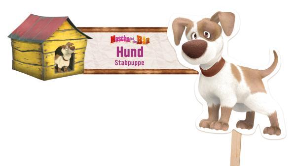 Hund | Rechte: KiKA