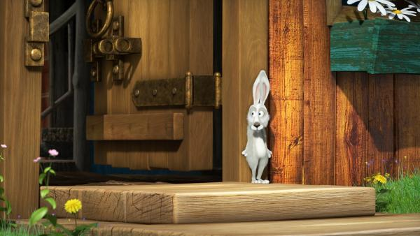 Der Hase versteckt sich.    Rechte: KiKA/Animaccord LTD
