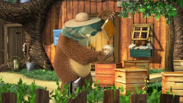 Zum Glück hat aber der Bär schon einige Erfahrung im Umgang mit Bienen.   Rechte: KiKA/Animaccord Animation Studio