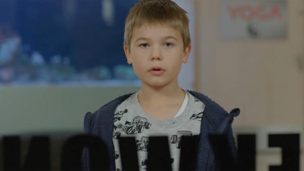 Marlon (Martin Evensen) beobachtet seinen Freund Sander beim Taekwondo-Training. | Rechte: WDR/NRK Super/Beta Film GmbH