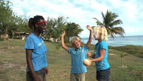 Mithilfe von ihrem Freund Anton ernten Merla und ihr Bruder Leo eine frische grüne Kokosnuss. | Rechte: SWR/Tonix Pictures GmbH