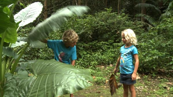 Merla und Leo machen sich im Dschungel auf die Suche nach Affen. | Rechte: SWR/Tonix Pictures GmbH