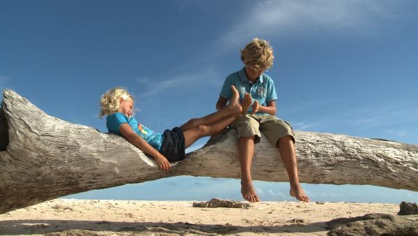 Gleich geht es für Merla und Leo mit dem Surfbrett auf's Wasser. | Rechte: SWR/Tonix Pictures GmbH
