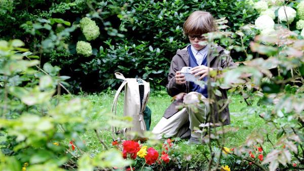 Tom (Thijs van de Veen) zögert, ob er seinen toten Hamster hier im Garten begraben soll. | Rechte: ZDF / Diede in´t Veld