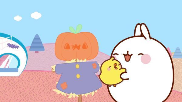 Es ist Halloween und Piu Piu hat einen Kürbis geschnitzt. | Rechte: hr/Millimages