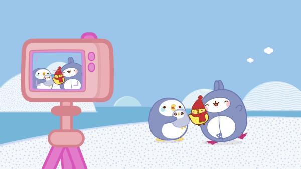 Eine Pinguin-Mama will Piu Piu adoptieren. | Rechte: hr/Millimages
