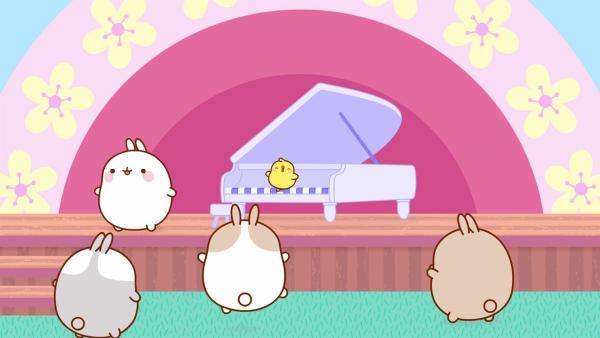 Molang, Piu Piu und ihre Freunde besuchen ein Klavierkonzert. | Rechte: hr/Millimages