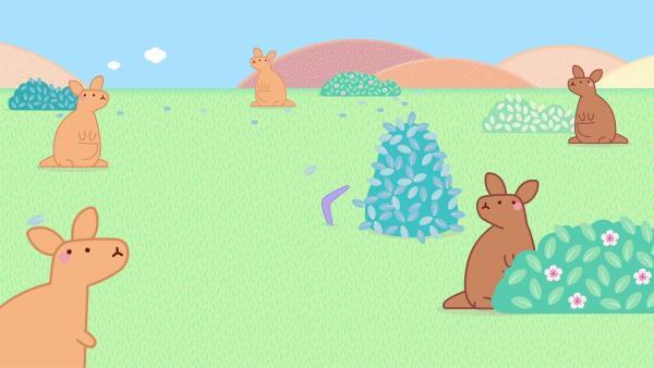 In Australien begegnen Molang und Piu Piu einigen Kängurus. | Rechte: hr/Millimages