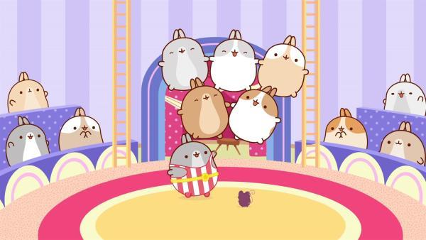 Im Zirkus sehen Molang und Piu Piu eine großartige Show von Mister Muskeln. | Rechte: hr/Millimages