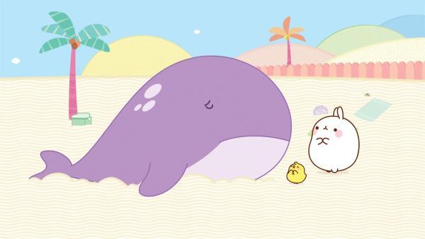 Molang und Piu Piu gehen surfen, aber sie haben große Schwierigkeiten mit den hohen Wellen. | Rechte: hr/Millimages