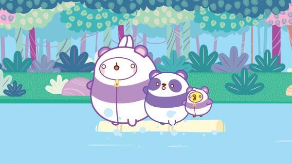 Um Pandas in freier Wildbahn zu erleben, wollen Molang und Piu Piu in China wandern. | Rechte: hr/Millimages