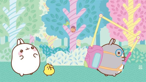 Molang und Piu Piu treffen sich mit einem Freund, um im Wald wandern zu gehen. | Rechte: hr/Millimages