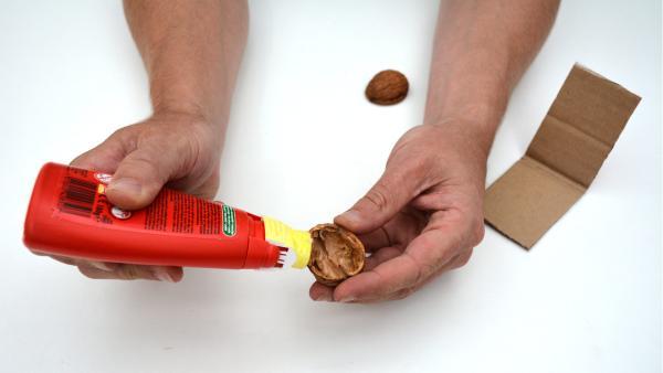 Trage etwas Flüssigkleber auf den Rand der Walnussschalen, Muscheln oder Kronkorken auf.  | Rechte: KiKA