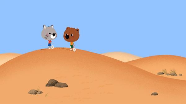 Mouk und Chavapa sind in Afrika, in der Sahara. Sie sollen ihrem Freund  Zerda einen Glücksbringer von dessen Oma geben, damit er beim bevorstehenden Dromedar Rennen gewinnt. | Rechte: KiKA/Millimages