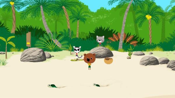 Mouk und Chavapa sind in Madagaskar. Von der einheimischen Anosy haben sie gehört, dass an einem Strand demnächst Seeschildkröten schlüpfen - das wollen sie unbedingt sehen! | Rechte: KiKA/Millimages