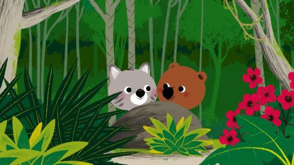 Mouk und Chavapa sind in Venezuela. Als sie durch den Regenwald fahren, sehen sie viele exotische Tiere und Pflanzen. | Rechte: KiKA/Millimages