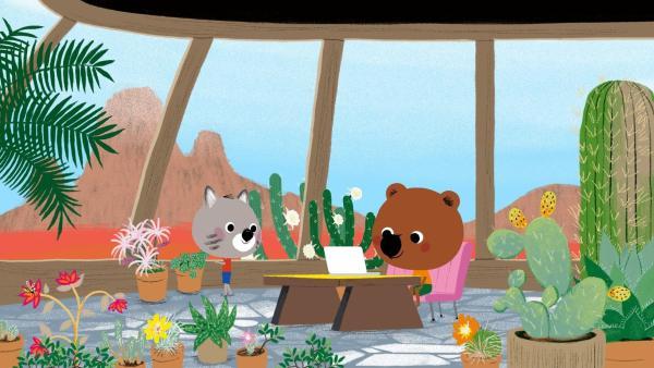 Mouk und Chavapa sind in Arizona. Sie besuchen Tuscon, der mit seiner Mutter Sedona in einem Earthship in der Wüste lebt. | Rechte: KiKA/Millimages