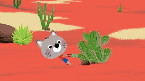 Chavapas Tasche hängt an den Stacheln eines Kaktus fest. Mit aller Kraft versucht er, sie wieder loszulösen. | Rechte: KiKA/Millimages