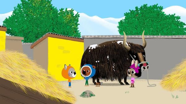 Mouk und Chavapa besuchen ihre Freundin Pasang auf der Hochebene von Tibet. Pasang hat heute aber keine Zeit die Freunde herumzuführen. Sie muss ihr Yak melken und die Milch zu ihrem Onkel Dawa ins nächste Dorf bringen. | Rechte: KiKA/Millimages