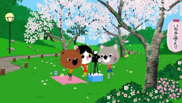 In Tokio treffen sich Mouk und Chavapa mit ihrer Freundin Miko zum Hanamifest in einem Park.<br/>Sie fotografieren einen schönen Kirschbaum in voller Blüte. | Rechte: KiKA/Millimages