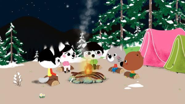 Mouk und Chavapa treffen sich in Kanada mit ihren Freunden zum Zelten im Wald. | Rechte: KiKA/Millimages