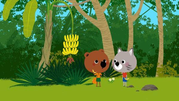 Mouk und Chavapa haben eine Bananenstaude entdeckt und ernten die süßen Früchte. | Rechte: KiKA/Millimages