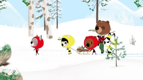 Mouk, Chavapa, Abey und Tadi gehen zu ihrem Freund Oki, der früher professioneller Eishockeyspieler war. Sie finden ihn im Wald beim Holzsuchen. Die Kinder helfen mit, da Oki im Gegenzug versprochen hat, ihnen einen Schläger zu leihen. | Rechte: KiKA/Millimages
