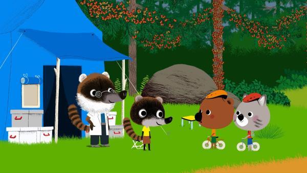Mouk und Chavapa besuchen in Mexiko die Insektenforscher Luis und Juan. Im Wald soll es außerdem noch andere Gäste geben, aber viel mehr verraten die Insektenforscher nicht. | Rechte: KiKA/Millimages
