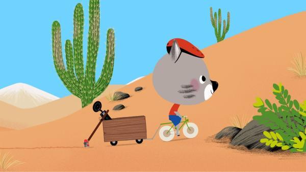 Mouk und Chavapa sind bei ihrem Freund Pepito in Chile. Hier begeben sie sich auf die Suche nach Meteoritensteinen. | Rechte: KiKA/Millimages