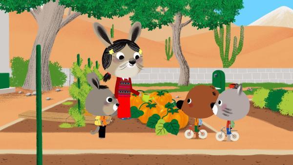 Mitten in der Wüste: Die Freunde bewundern den Gemüsegarten von Pepitos Oma. | Rechte: KiKA/ Millimages