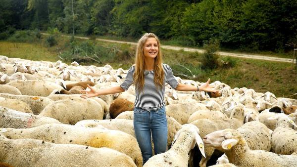 Jana steht inmitten einer Herde von Schafen. | Rechte: WDR/tvision
