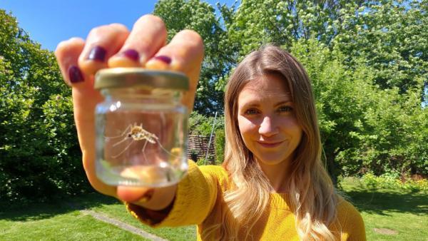 Reporterin Jana macht sich im Garten auf Mückenjagd und erfährt, warum an Stechmücken geforscht wird. | Rechte: WDR/tvision