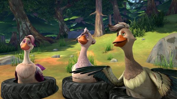 Daunenfein, Goldauge und Flügelschön stellen bei der Prüfung die Fragen. | Rechte: BR/Studio 100 Animation/Studio 100 NV