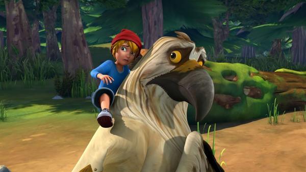 Nils und Gorgo sind ein Team bei der großen Gänseprüfung. | Rechte: BR/Studio 100 Animation/Studio 100 NV